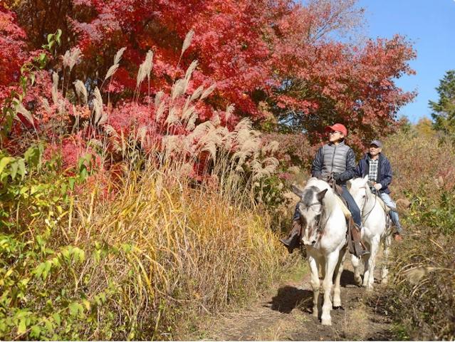 10月中旬以降は紅葉が見事!photo by そとあそび