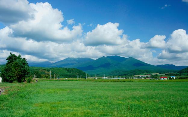 photo by 写真共有サイト「フォト蔵」