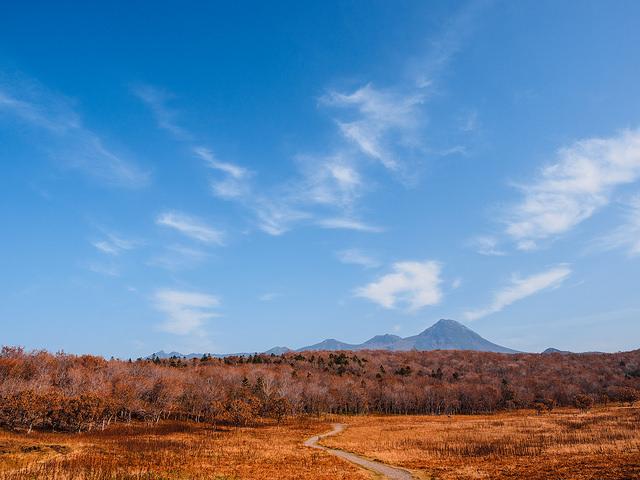 photo by Shinichi Morita