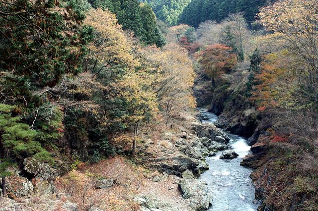 photo by hiroaki maeda