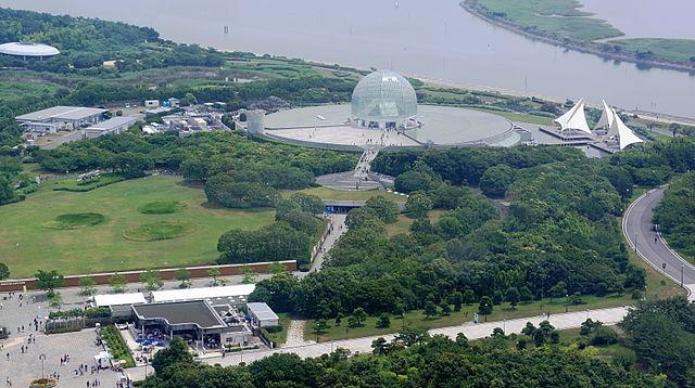 photo by 葛西臨海水族園 - Wikipedia