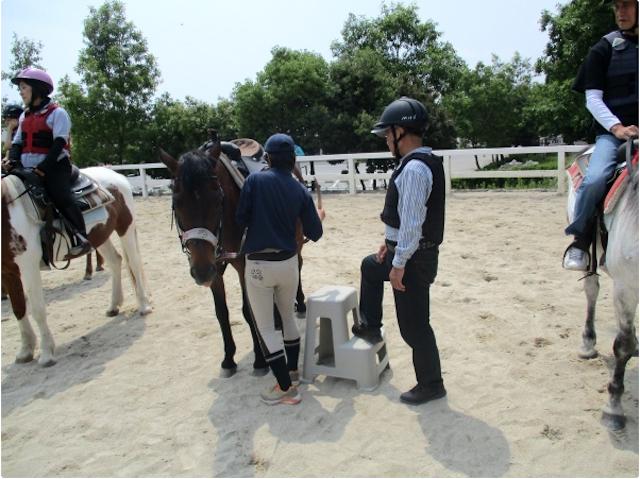 基本的な馬の動かし方を練習!photo by そとあそび