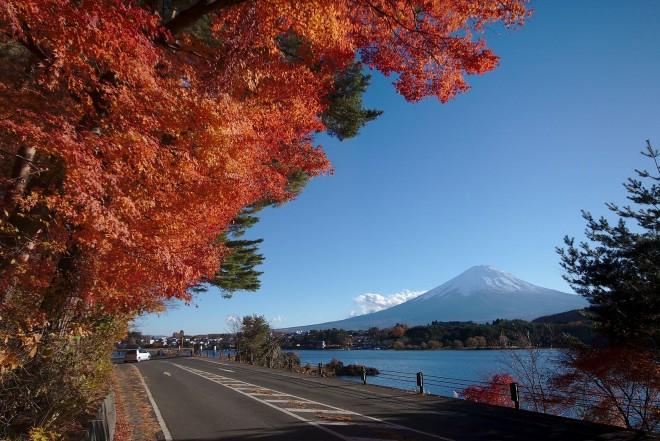 photo by File:Kawaguchiko Momiji Tunnel Fuji.jpg - Wikimedia Commons