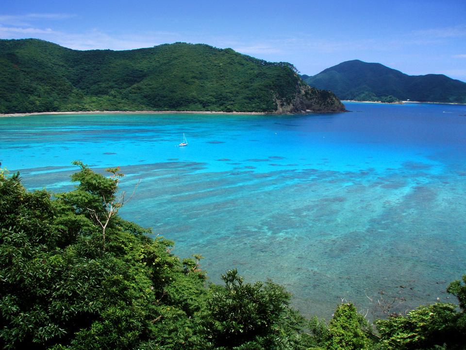 photo by 奄美大島モーターパラグライダー - Google 検索