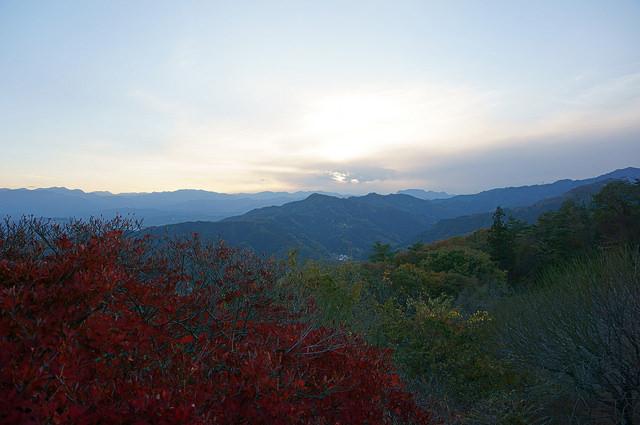 photo by Masutaka Tanaka