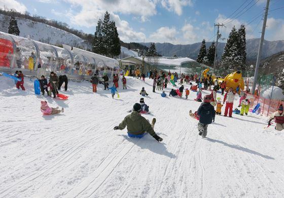 photo by 滋賀県奥伊吹スキー場公式HP