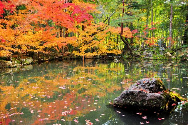 「南禅寺」photo by はっちー。