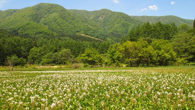 photo by keifuru2005