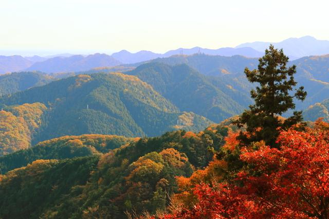 高尾山 photo by IK