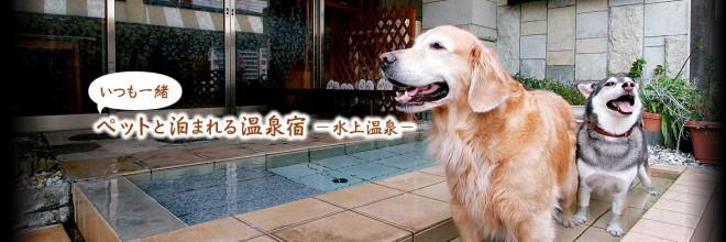 photo by だいこく館 |公式サイト