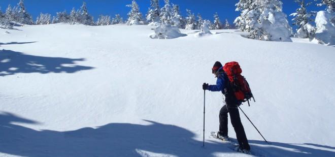 snowshoeing1-afdc6c8a106683821a9d453ea09868ce