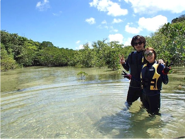 マングローブの森でミナミトビハゼやシオマネキを探してみましょう!photo by そとあそび