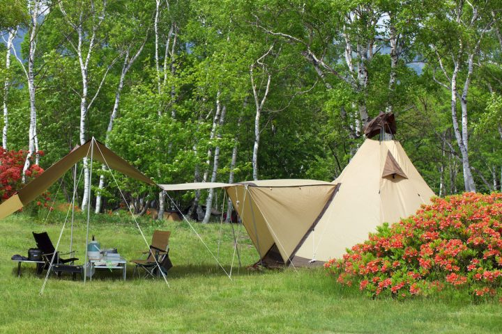 場 まなか キャンプ の 森