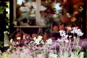 photo by noe**