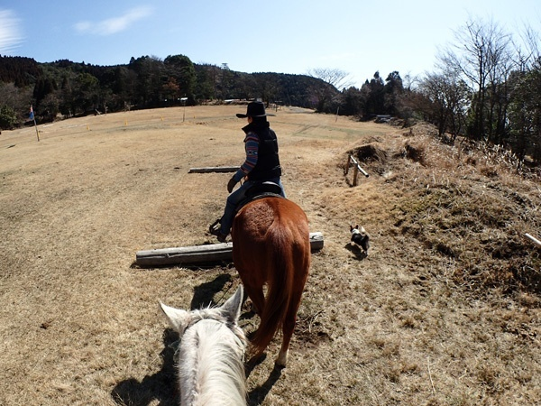 photo by 《40分ホーストレッキング》手軽に楽しむ本格ホーストレッキング!(宮崎県・都城・霧島) そとあそび