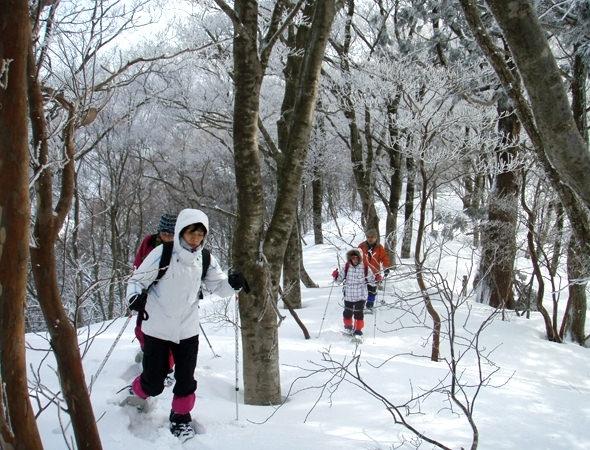 photo by 【ガイドおすすめ】 関西の秘境・芦生&三国峠登頂コース (ランチ付)(滋賀県・高島)|そとあそび