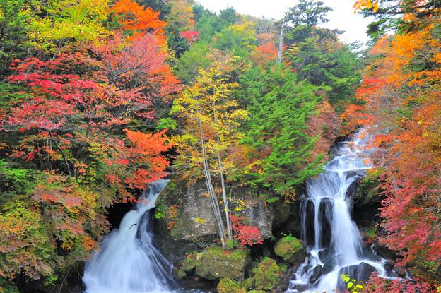 「竜頭ノ滝」photo by 紅葉の滝と呼ばれて^^ - 写真共有サイト「フォト蔵」