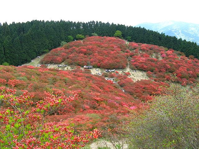 photo by 大和葛城山 - Wikipedia