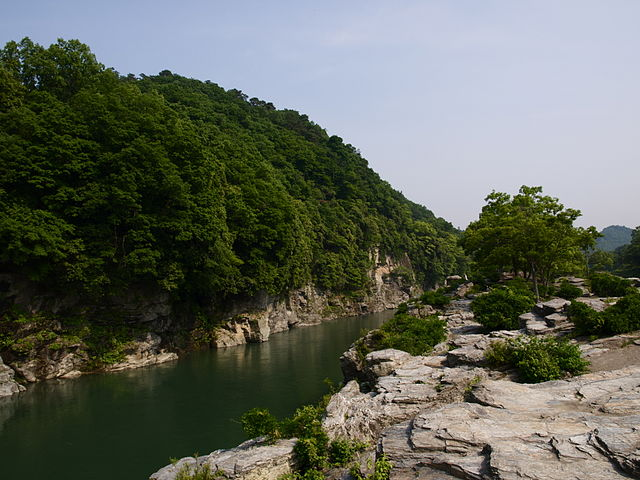photo by 長瀞渓谷 - Wikipedia
