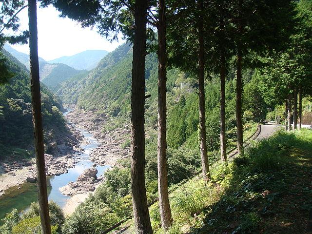photo by 奥瀞 - Wikipedia
