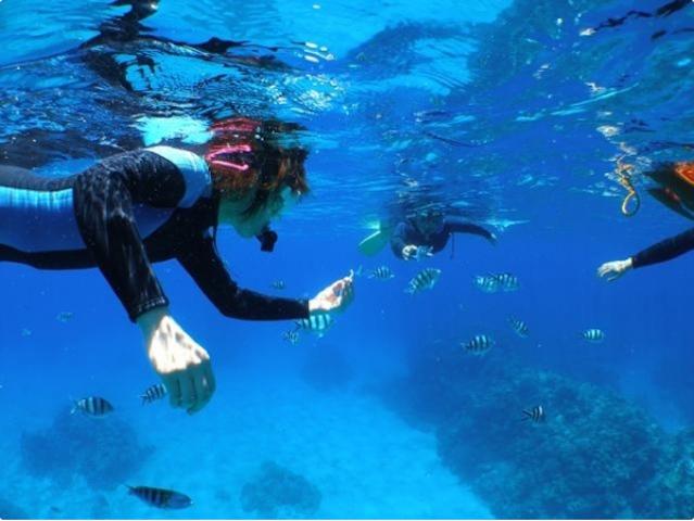 こんなに近くまで魚が寄ってきます!photo by そとあそび