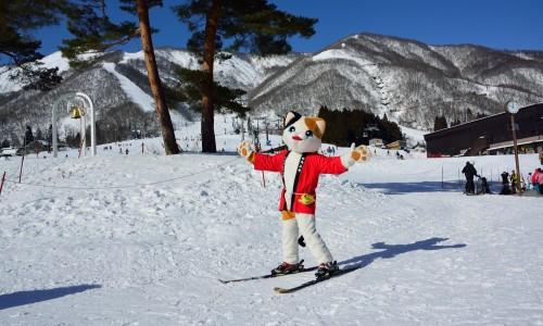 photo by 白馬五竜スキー場