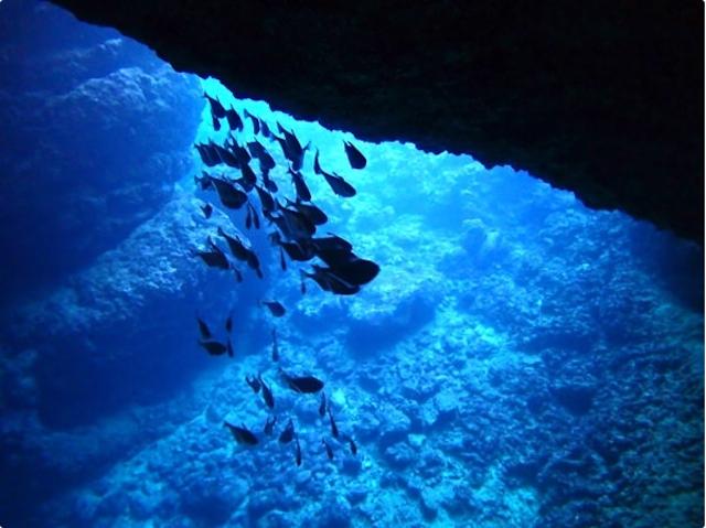 沖縄・青の洞窟photo by そとあそび
