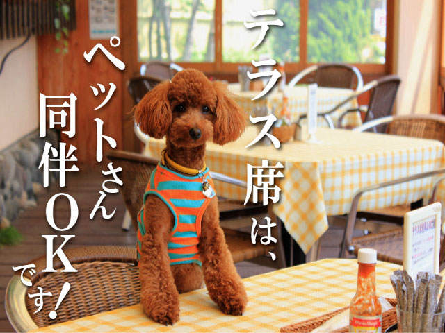 photo by 水上名物焼きカレー カフェレストラン亜詩麻(あしま)
