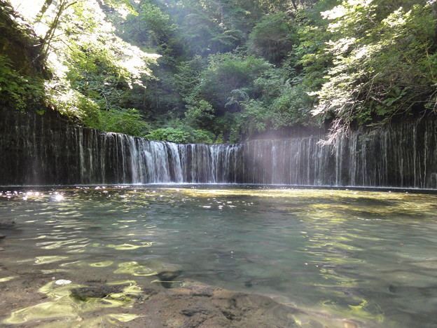 photo by rakukatu