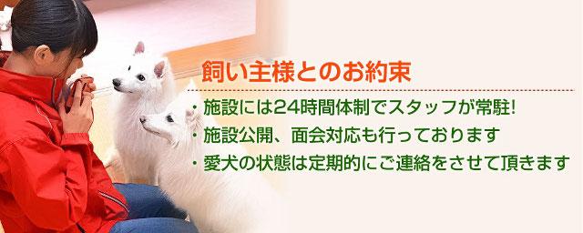 photo by 老犬介護ホーム みなかみ温泉寶ホテル
