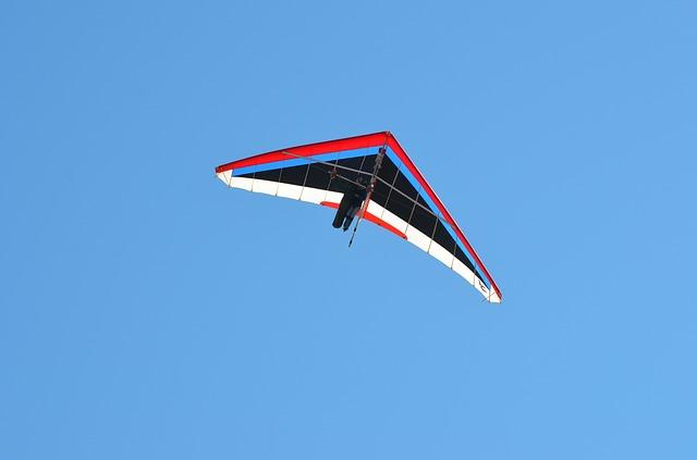 delta-flying-281699_640