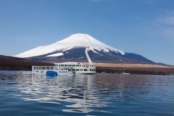 photo by 遊覧船  山中湖の白鳥の湖
