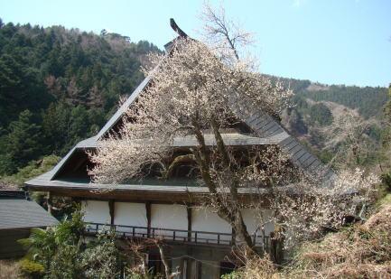 photo by 古民家の宿山城