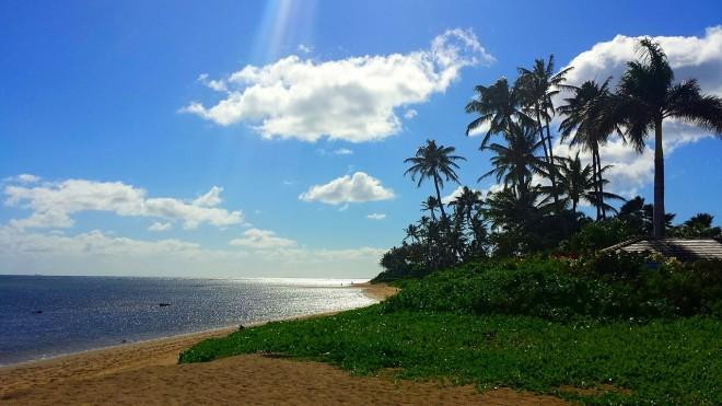 photo by Aloha_Mahalo