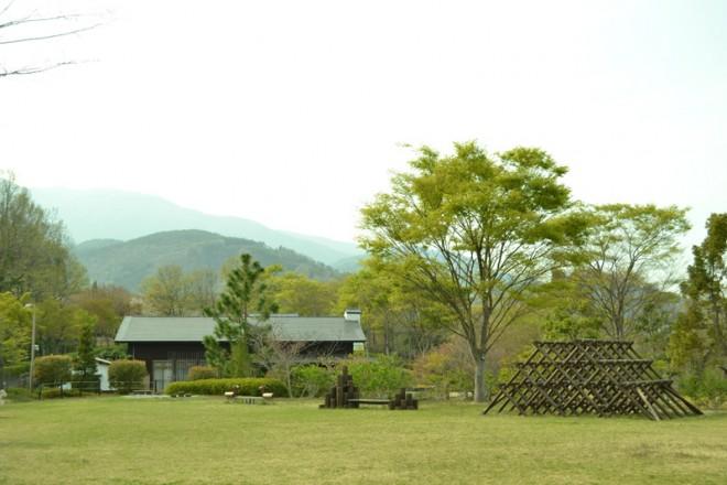 photo by 山梨県森林総合研究所