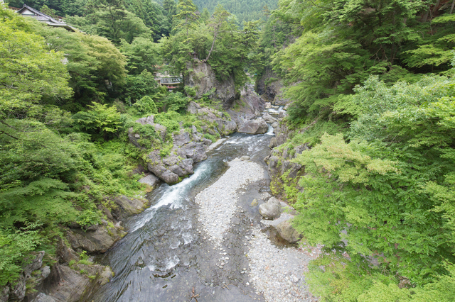 photo by Yoshinori Okada