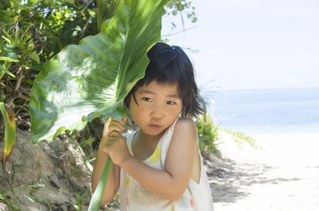 photo by sasaki106