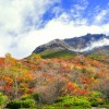 photo by tenjou