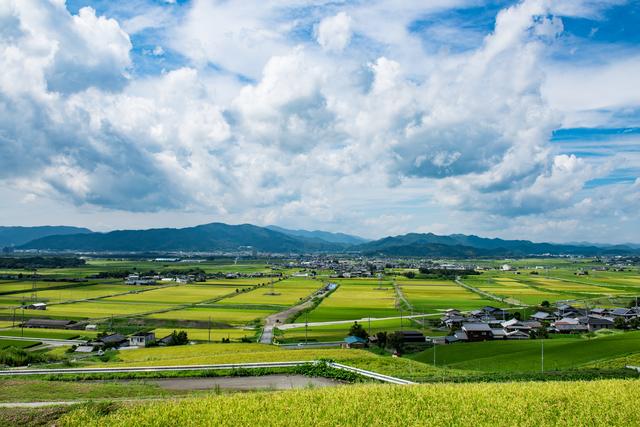 photo by hiroki okumura