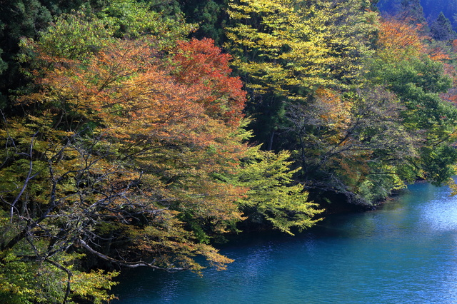 「四万湖」photo by ハッシブ2世