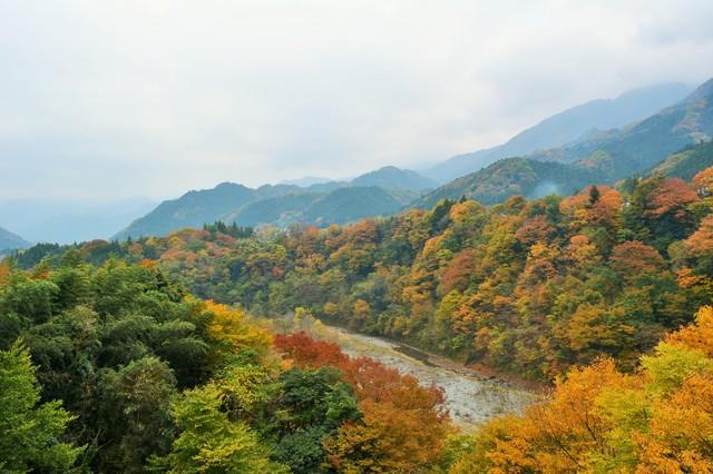 photo by YoriKei