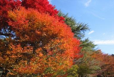 photo by 阪急阪神ホールディングス