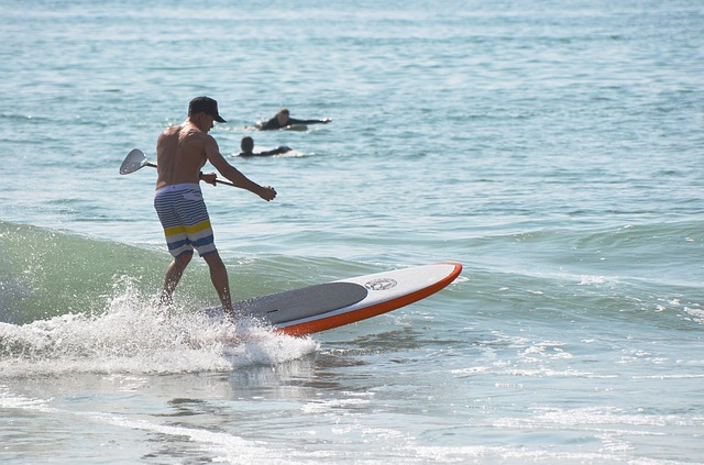 photo by 無料の写真: サーフィン, パドルボード, 海, 男 - Pixabayの無料画像 - 362860