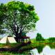 初心者にも嬉しい!手ぶらで大丈夫なキャンプ場24選【関東編】